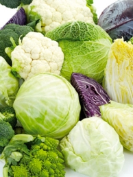 cruciferous vegetables including Arugula, watercress, cabbage, Napa cabbage, daikon, wasabi, turnip, rutabaga, broccoli rabe, bok choy, cauliflower, broccoli, kohlrabi, Brussels sprouts, collard greens, kale